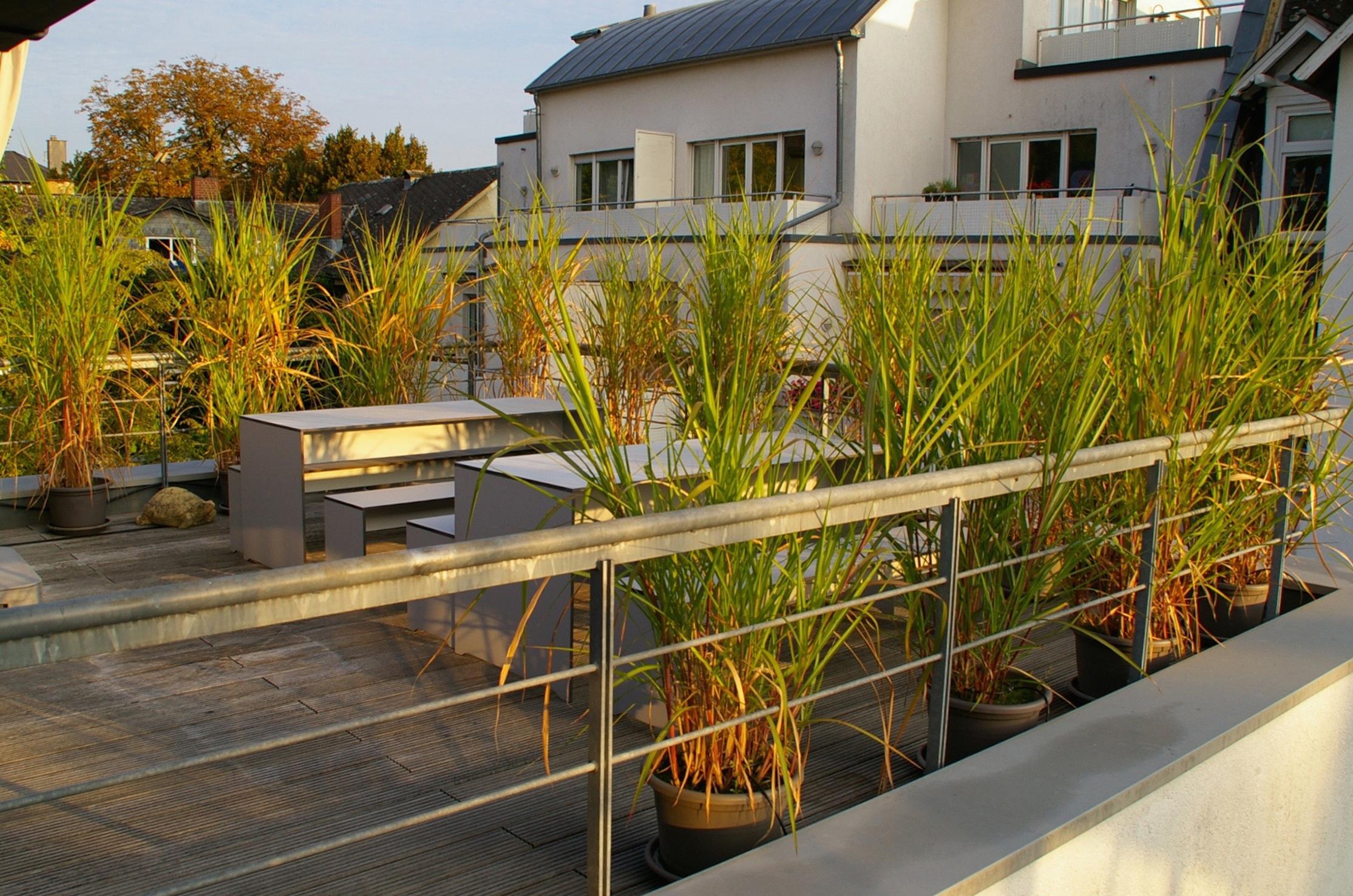 Schmees Wagner - Büro Terrasse